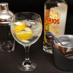 Larios 1 Litro