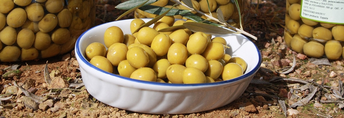 Aceitunas Manzanilla – Uno de los ingredientes alimenticios españoles más saludables que conocemos