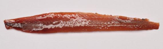 Pourquoi l' anchois cantabrique est-il le meilleur?