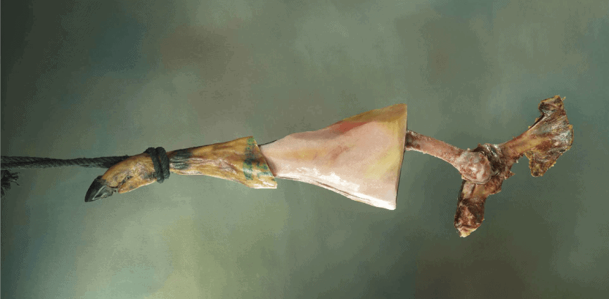 hueso de jamón serrano - gastronomic Spain
